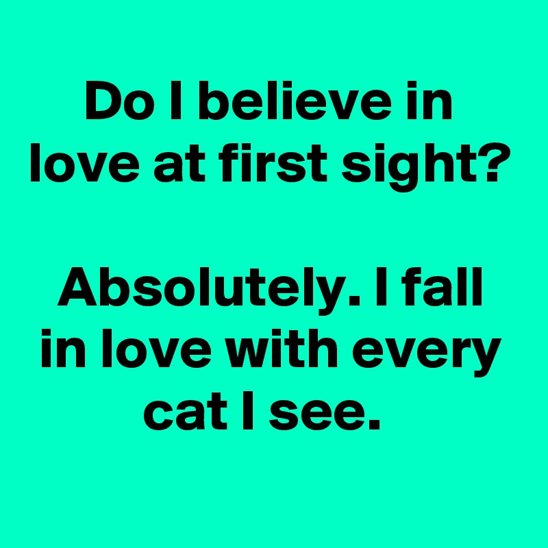 Do I believe in love at first sight?  Absolutely. I fall in love with every cat I see.