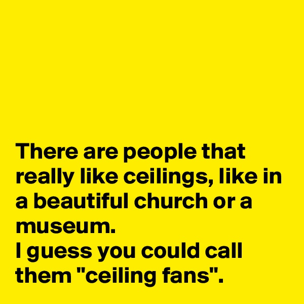 """There are people that really like ceilings, like in a beautiful church or a museum. I guess you could call them """"ceiling fans""""."""