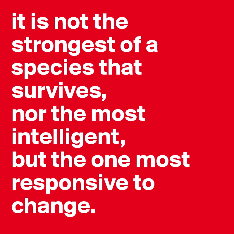 it is not the strongest of a species that survives,  nor the most intelligent,  but the one most responsive to change.