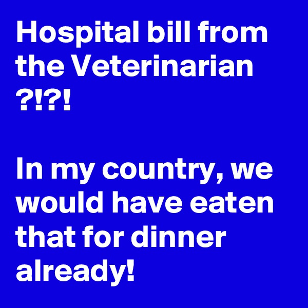 Hospital bill from the Veterinarian ?!?!  In my country, we would have eaten that for dinner already!