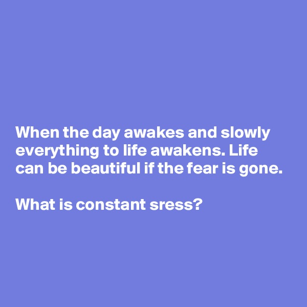 When the day awakes and slowly everything to life awakens. Life can be beautiful if the fear is gone.   What is constant sress?
