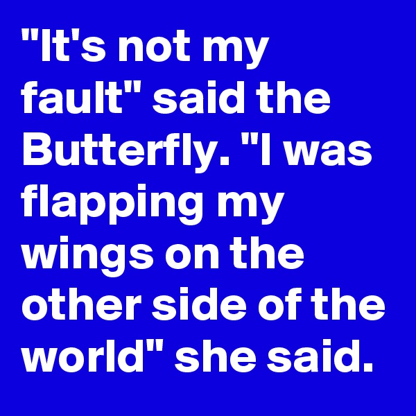 """""""It's not my fault"""" said the Butterfly. """"I was flapping my wings on the other side of the world"""" she said."""