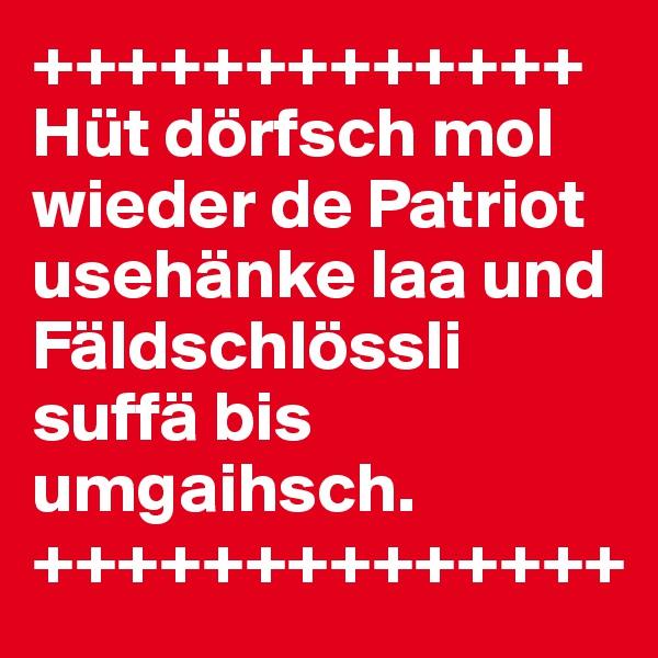 +++++++++++++ Hüt dörfsch mol wieder de Patriot usehänke laa und Fäldschlössli suffä bis umgaihsch. ++++++++++++++