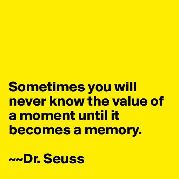 Sometimes you will never know the value of a moment until it becomes a memory.   ~~Dr. Seuss