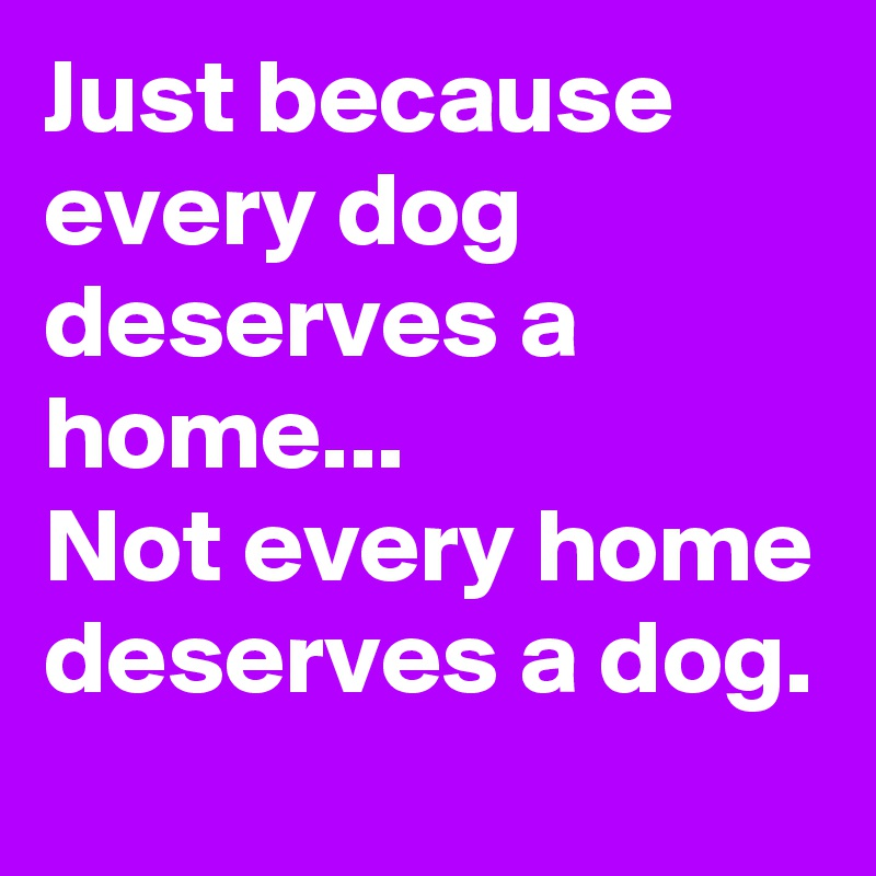 Just because every dog deserves a home...  Not every home deserves a dog.