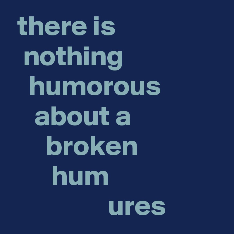 there is    nothing     humorous     about a       broken        hum                  ures