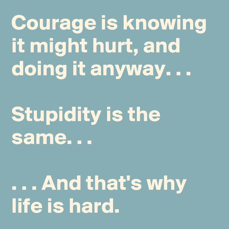 Courage is knowing it might hurt, and doing it anyway. . .  Stupidity is the same. . .  . . . And that's why life is hard.
