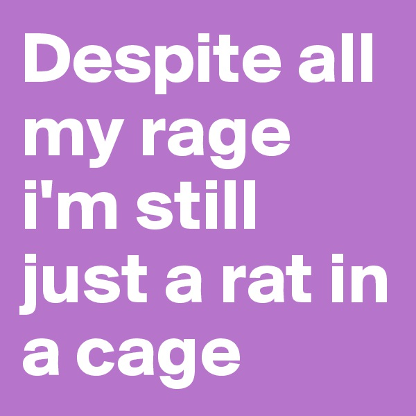 Despite all my rage i'm still just a rat in a cage