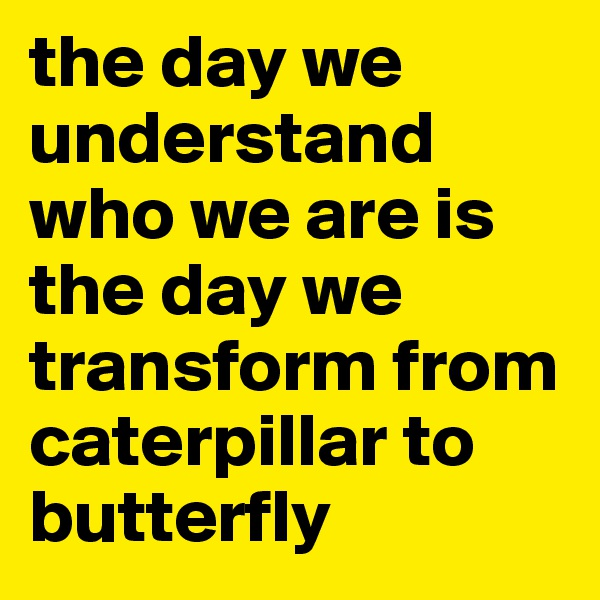 the day we understand who we are is the day we transform from caterpillar to butterfly