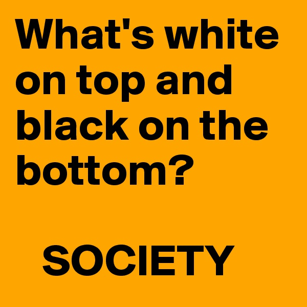 What's white on top and black on the bottom?     SOCIETY