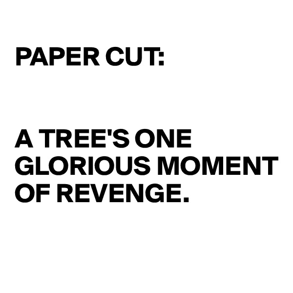 PAPER CUT:   A TREE'S ONE GLORIOUS MOMENT OF REVENGE.