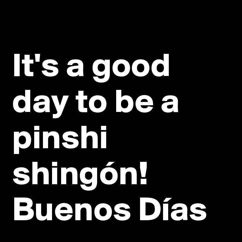 It's a good day to be a pinshi shingón! Buenos Días