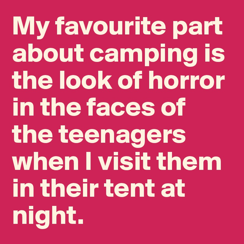 My favourite part about camping is the look of horror in the faces of the teenagers when I visit them in their tent at night.