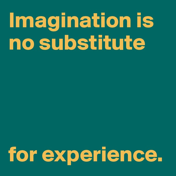 Imagination is no substitute     for experience.