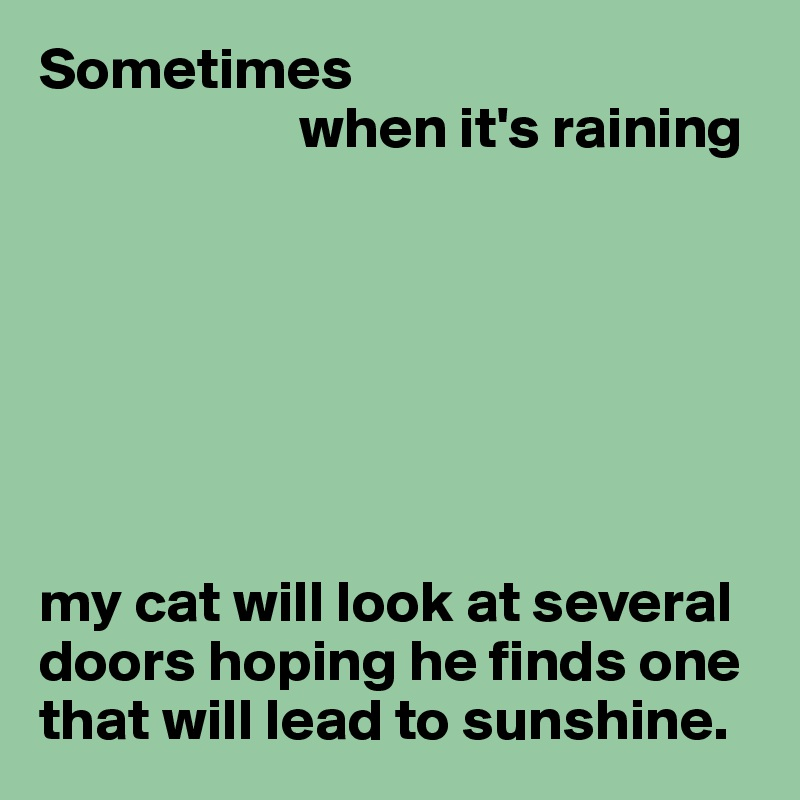 Sometimes                       when it's raining        my cat will look at several doors hoping he finds one that will lead to sunshine.