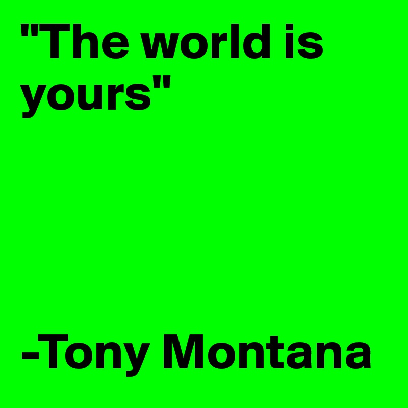 """The world is yours""     -Tony Montana"