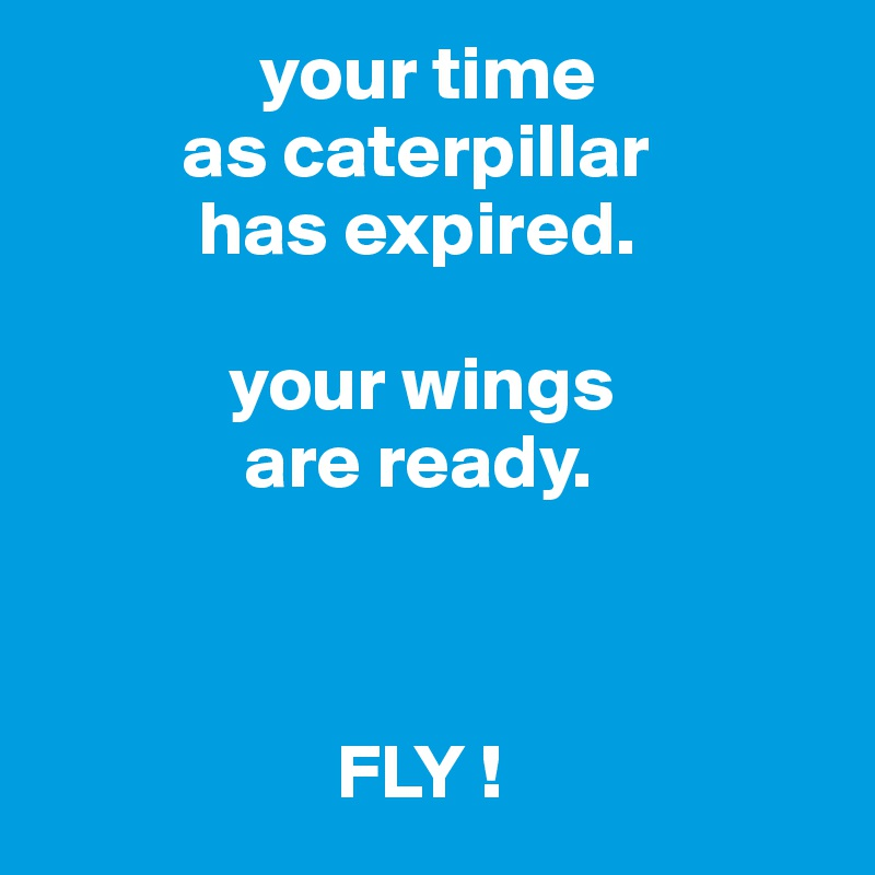 your time          as caterpillar           has expired.              your wings              are ready.                                                                 FLY !
