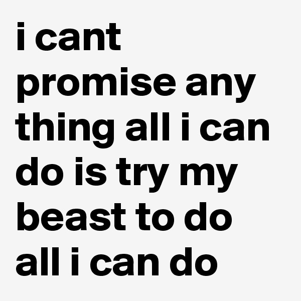 i cant promise any thing all i can do is try my beast to do all i can do