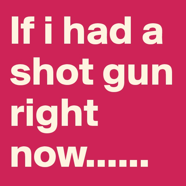 If i had a shot gun right now......