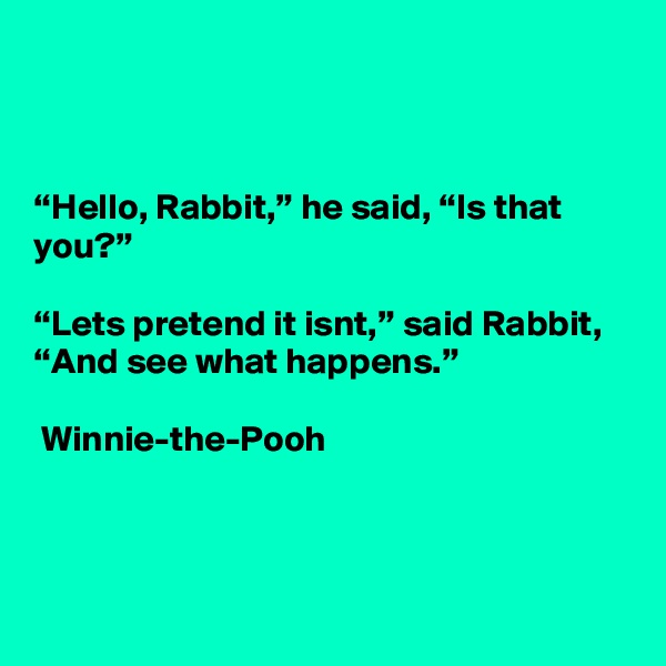 """""""Hello, Rabbit,"""" he said, """"Is that you?""""  """"Lets pretend it isnt,"""" said Rabbit, """"And see what happens.""""   Winnie-the-Pooh"""