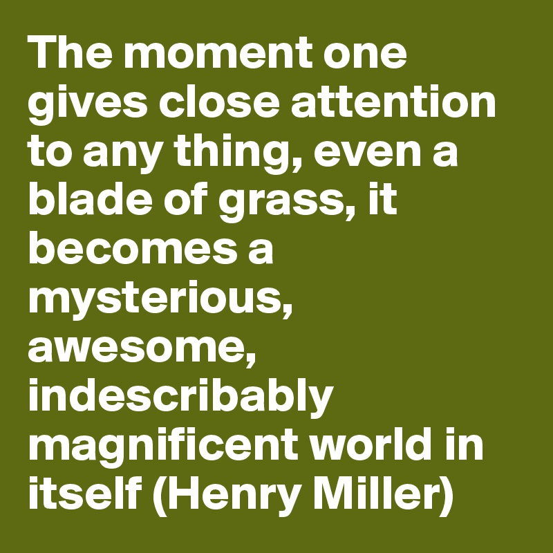 The moment one gives close attention to any thing, even a blade of grass, it becomes a mysterious, awesome, indescribably magnificent world in itself (Henry Miller)
