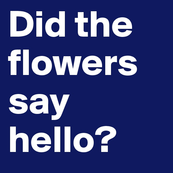 Did the flowers say hello?