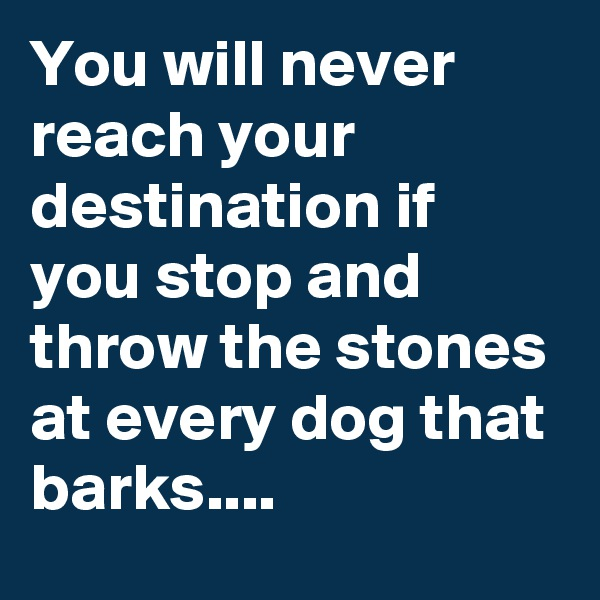 You will never reach your destination if you stop and throw the stones at every dog that barks....