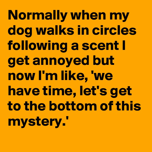 Normally when my dog walks in circles following a scent I get annoyed but now I'm like, 'we have time, let's get to the bottom of this mystery.'