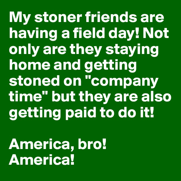 """My stoner friends are having a field day! Not only are they staying home and getting stoned on """"company time"""" but they are also getting paid to do it!   America, bro! America!"""
