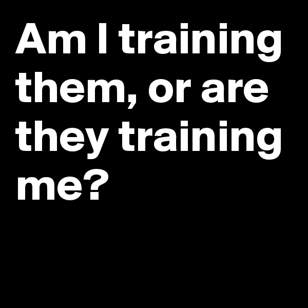 Am I training them, or are they training me?