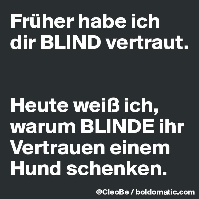 Früher habe ich dir BLIND vertraut.   Heute weiß ich, warum BLINDE ihr Vertrauen einem Hund schenken.