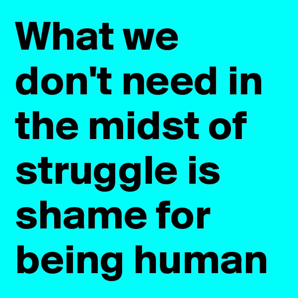 What we don't need in the midst of struggle is shame for being human