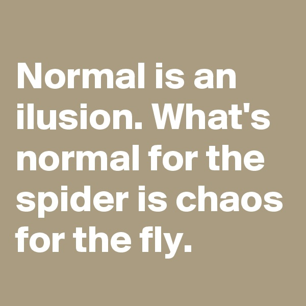 Normal is an ilusion. What's normal for the spider is chaos for the fly.