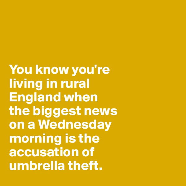 You know you're  living in rural  England when  the biggest news  on a Wednesday  morning is the  accusation of   umbrella theft.