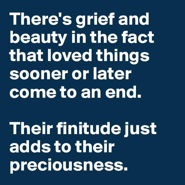 There's grief and beauty in the fact that loved things sooner or later come to an end.   Their finitude just adds to their preciousness.