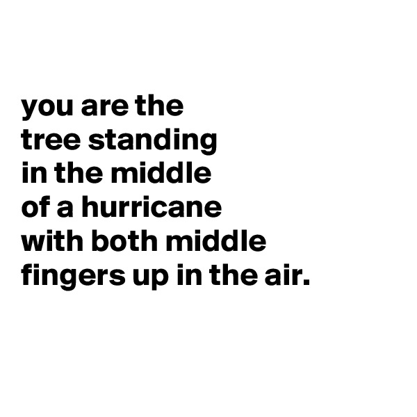 you are the tree standing in the middle  of a hurricane with both middle fingers up in the air.