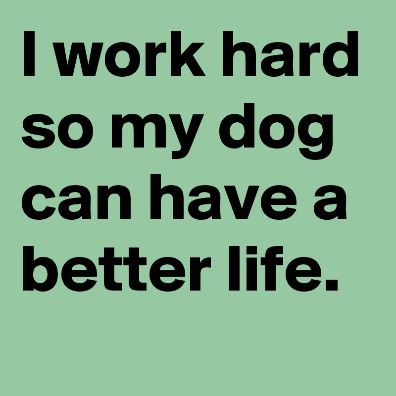 I work hard so my dog can have a better life.