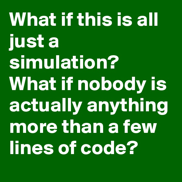 What if this is all just a simulation? What if nobody is actually anything more than a few lines of code?