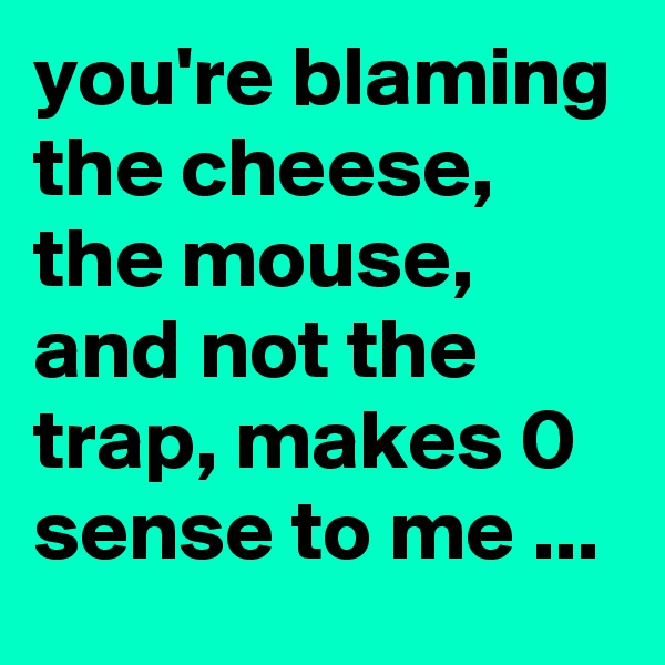 you're blaming the cheese, the mouse, and not the trap, makes 0 sense to me ...