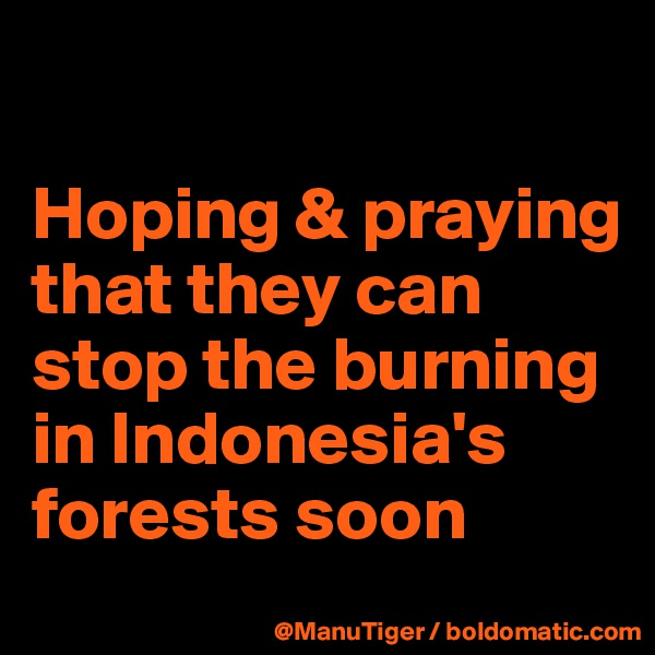 Hoping & praying that they can stop the burning in Indonesia's forests soon