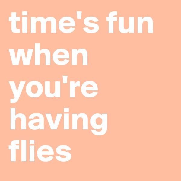 time's fun when you're having flies