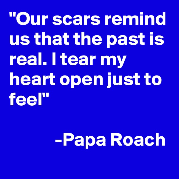 """""""Our scars remind us that the past is real. I tear my heart open just to feel""""              -Papa Roach"""