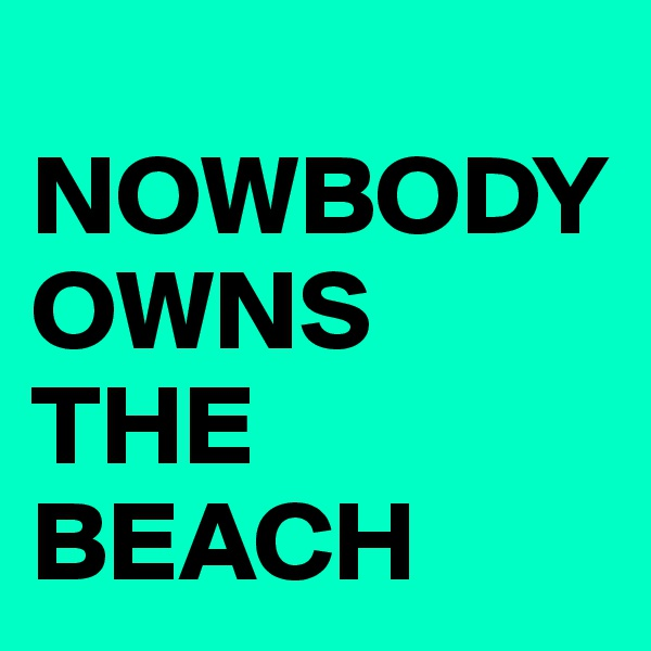 NOWBODY OWNS  THE BEACH