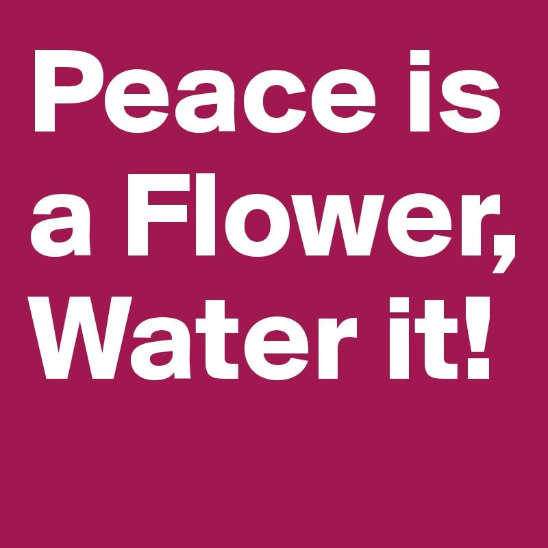 Peace is a Flower, Water it!