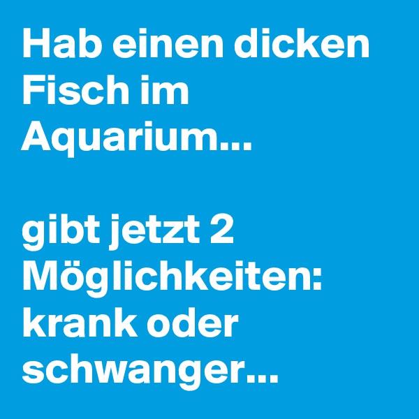 Hab einen dicken Fisch im Aquarium...  gibt jetzt 2 Möglichkeiten: krank oder schwanger...