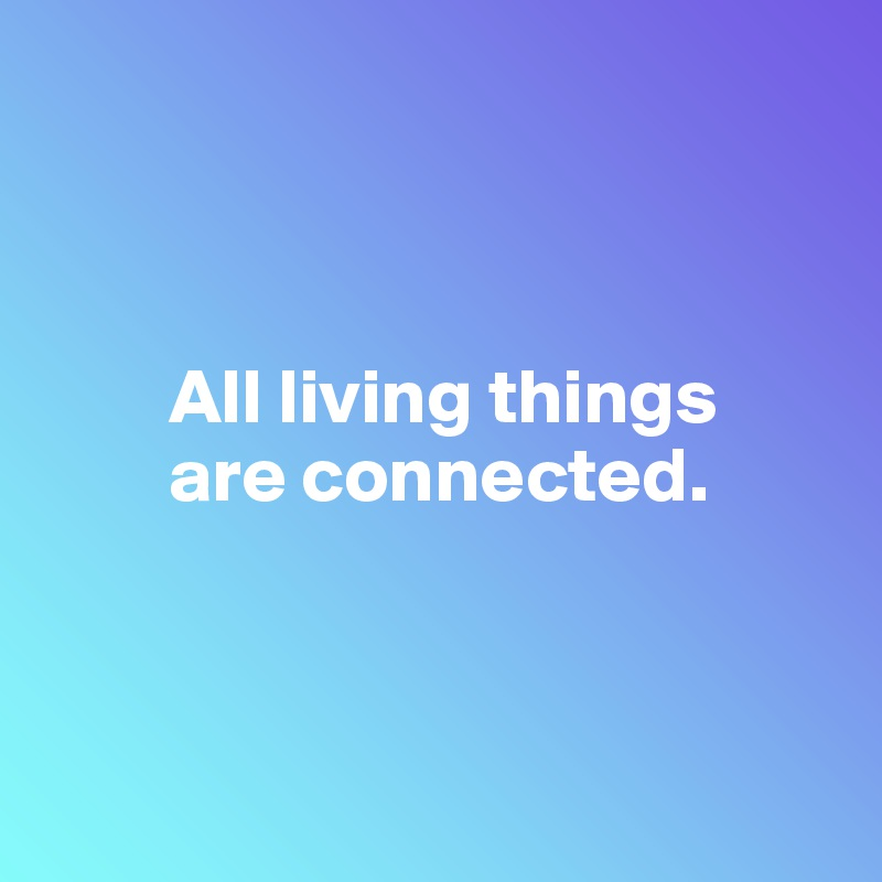 All living things          are connected.