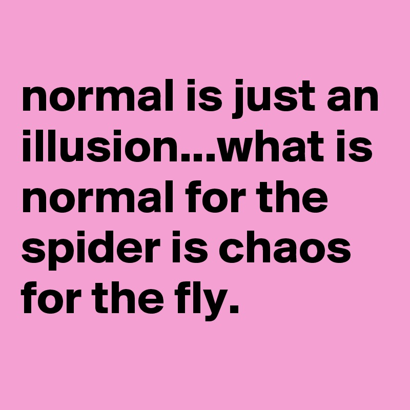 Normal is just an illusionwhat is normal for the spider is chaos normal is just an illusionwhat is normal for the spider is chaos altavistaventures Choice Image