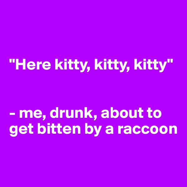 """""""Here kitty, kitty, kitty""""   - me, drunk, about to get bitten by a raccoon"""