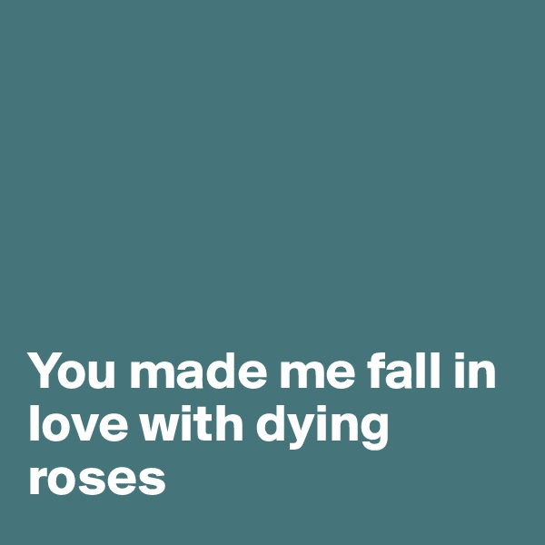 You made me fall in love with dying roses