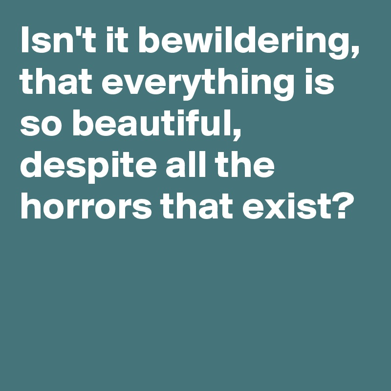Isn't it bewildering, that everything is so beautiful, despite all the horrors that exist?